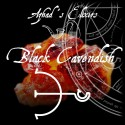 """Black Cavendish"" Pure - Azhad"
